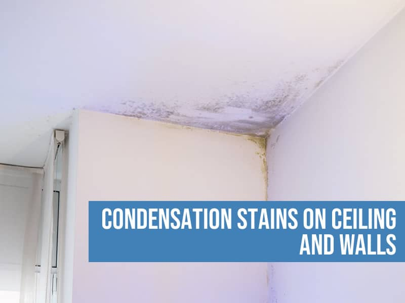 condensation stains on ceiling